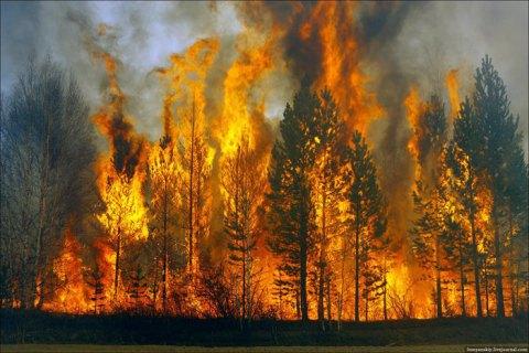 відповідальність за пожежі